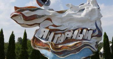 В посёлок «Янтарный»
